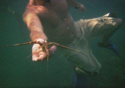Berlengas snorkeling